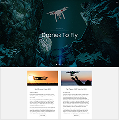 drones website business for sale