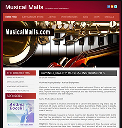 musical instruments website business for sale
