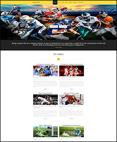 pro sports website business for sale